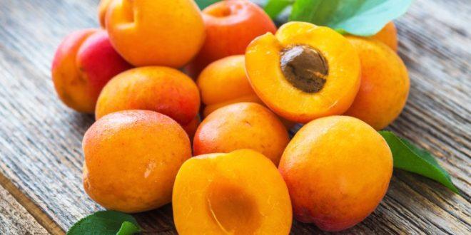 UE attend à une faible récolte abricots cette année