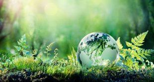 Capital naturel: Un financement de 2 millions d'euros au Maroc
