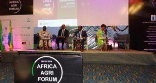 africa agri forum