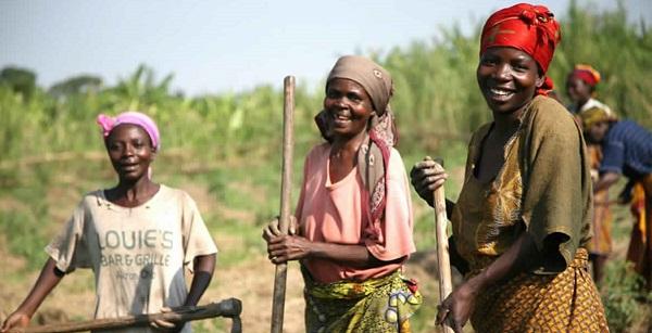 L'agriculture est le secteur qui transformera l'Afrique