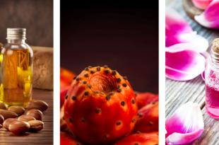 Agadir: Salon National des produits du terroir
