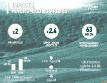 plan maroc vert impacts économiques