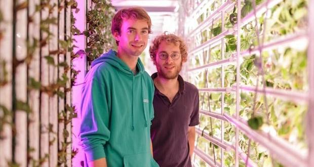Guillaume Fourdinier et Gonzague Gru,