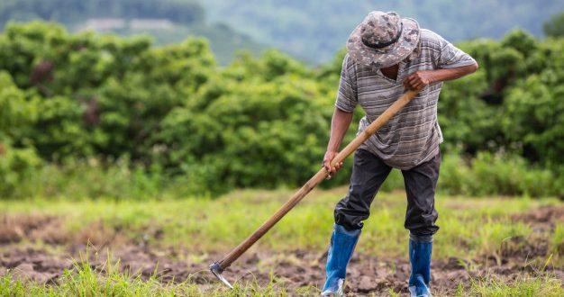 ثلاثة ملايين مزارع مغربي ليس لديهم تغطية صحية