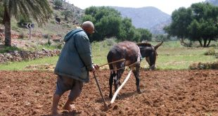 Indemnisation-des-agriculteurs-de-42-communes-de-Béni-Mellal-Khénifra