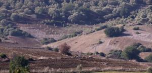 « La croissance verte au Maroc » 300 millions de dollars pour appuyer ce projet écolo
