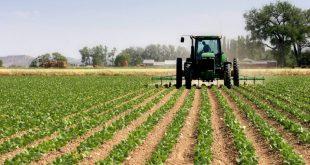 Transformation agricole et changements climatiques : Le Maroc récompensé pour ses nombreux efforts