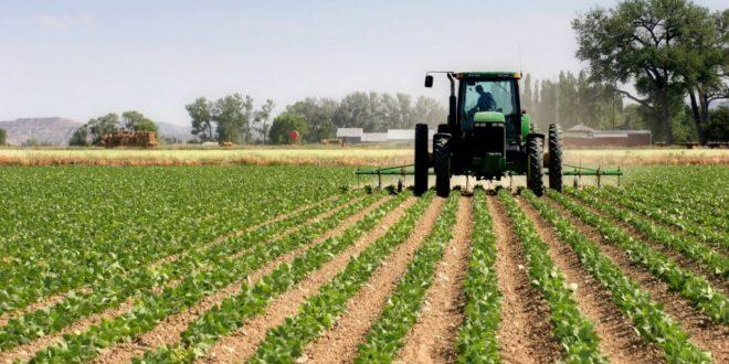 agriculture Rabat-Salé sur la bonne voie
