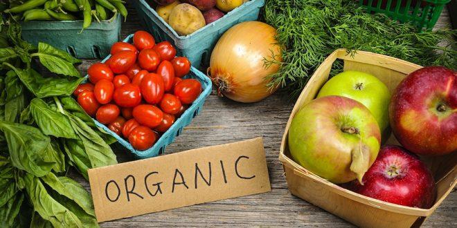 Hausse de 14% des ventes de produits bio aux États-Unis