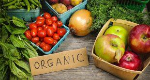 Les ventes de produits bio explosent aux États-Unis