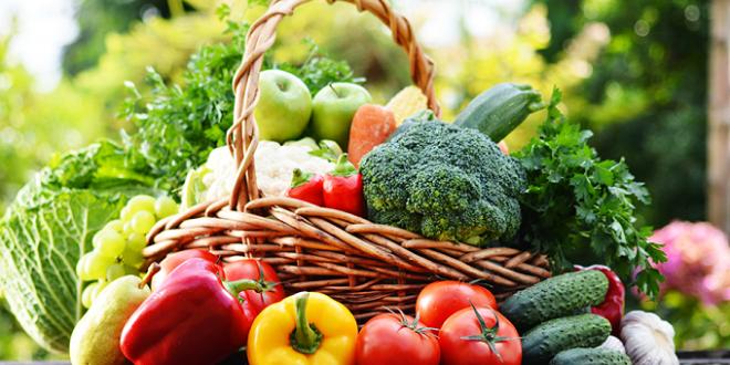 Les fruits et légumes marocains très appréciés aux Pays-Bas malgré une forte concurrence