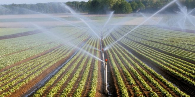 Irrigation : Un projet de grande envergure pour le Sahel