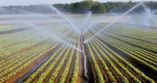 Rabat-Salé-Kénitra une économie considérable en irrigation se profile