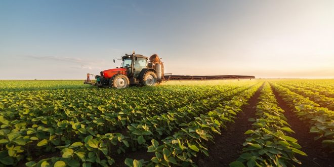 Le budget investissement ministère Agriculture