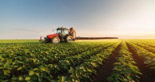 agriculture relance économique