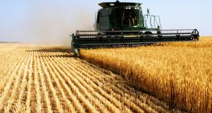 Casablanca-Settat : réalisation de l'intégralité du programme agricole
