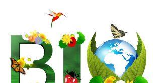 Le-Covid-19-façonnera-l-industrie-biologique-cette-année-après-un-record-en-2019
