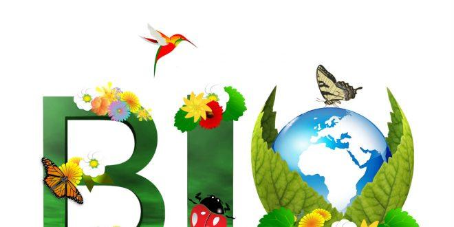 Agriculture Biologique: Comment bénéficier de l'aide à la certification ?