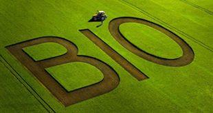 Agriculture biologique : Un producteur marocain remporte un trophée en Allemagne