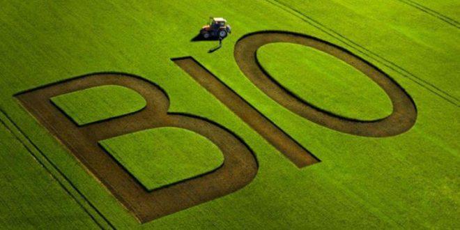 Oriental superficie réservée agriculture bio atteint 570 ha