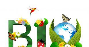 agriculture biologique LOUKILI Benslimane