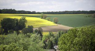 Une entreprise londonienne souhaite encore investir dans le secteur agricole marocain