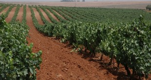 L'agriculture marocaine doit s'adapter face...