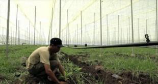 L'Agropole du Souss-Massa par MEDZ