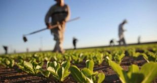 Cosumar promeut l'entreprenariat en monde rural à travers sa caravane Al Ibdaâ