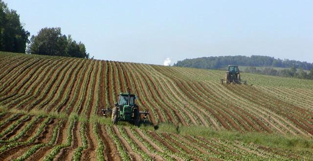 COP21: l'agriculture a sa place dans le débat