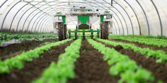 La BM financera à hauteur de 200 millions de dollars Génération Green 2020-2030