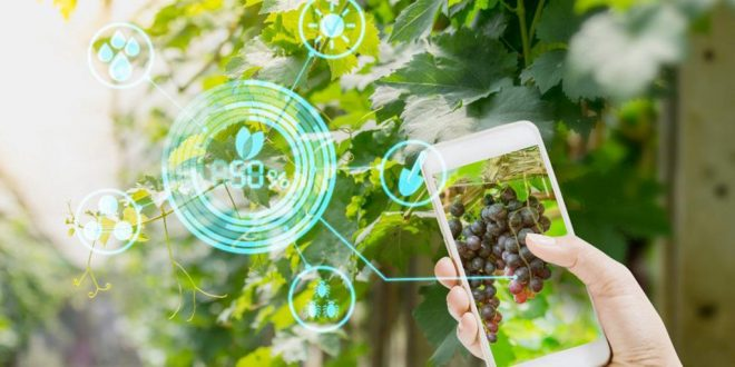 Maroc révolution digitale agriculture