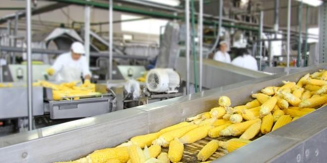 Agroalimentaire: Les échanges entre le Maroc et l'Afrique de l'Ouest