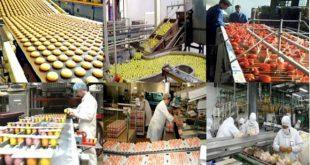 Les exportations de produits alimentaires marocains augmentent à 3,78 MT