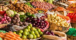 Covid-19: L'exportation des produits maraichers marocains augmentent de 3%