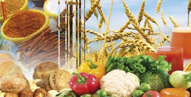 Agroalimentaire: Fès-Meknès en phase d'être un fief des investisseurs italiens