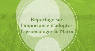 agroecologie_maroc