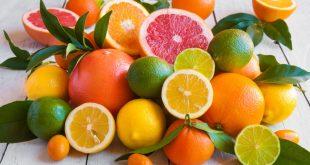 Le Maroc hausse production agrumes