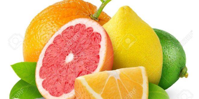 baisse exportation agrumes Maroc