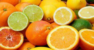 Les exportations tunisiennes agrumes sont en hausse de 57%