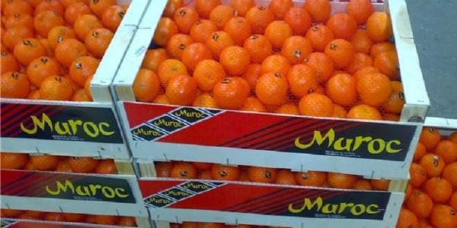 Convention d'une assistance et soutien aux opérateurs agricoles marocains
