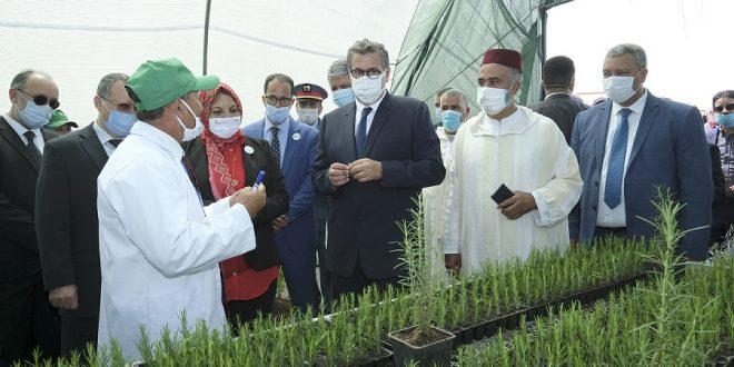 Province de Larache : Lancement et visite de plusieurs projets de l'agriculture, de la pêche maritime et des eaux et forêts