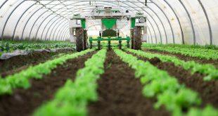 Maroc innovation et la recherche pour une agriculture plus performante