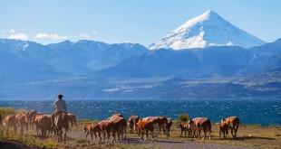 Céréales: l'Argentine inquiète les marchés