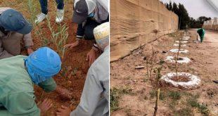 La Fondation Azura plante plus de 6.800 arbres à Chtouka-Ait Baha