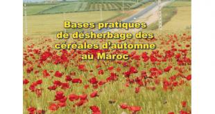 Lecture: Bases pratiques de désherbage des céréales d'autonome au Maroc