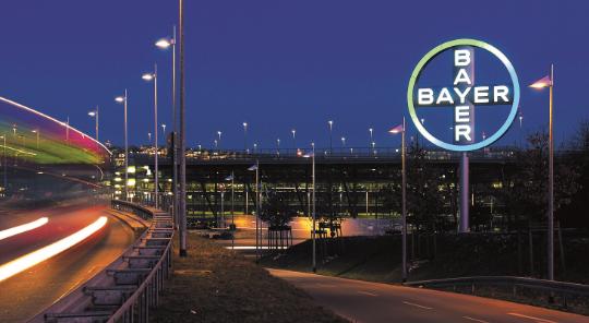 Bayer Maroc