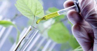 Biotechnologie: Un plan d'innovation pour venir au secours des agriculteurs