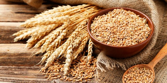 Blé: La France et le Maroc signent une convention pour dynamiser l'importation du blé