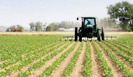 Campagne agricole: Le déficit pluviométrique au Maroc atteint 104% comparé à la norme